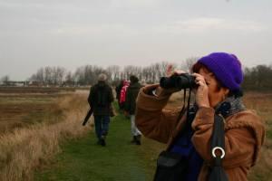 Exploring Breydon