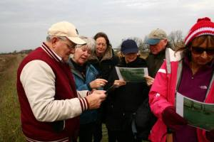 Looking at Paintings of Breydon